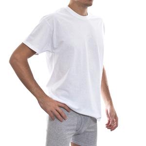 Другие товары HanesФутболка Hanes T-Shirt  (5 шт)<br><br>Цвет: Белый<br>Выберите размер US: S