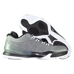 684855-003-krossovki-basketbolnye-air-jordan-cp3-viii-cool-grey