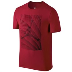 futbolka-air-jordan-12-horizon-t-shirt-801118-687