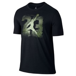 futbolka-air-jordan-13-elevated-t-shirt-833957-010