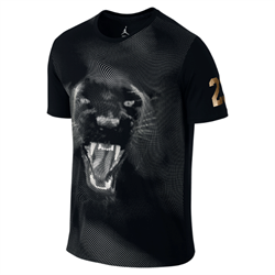 688526-010-futbolka-air-jordan-phantom-panther-dri-fit