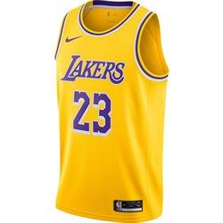ofitsialnaya-maika-nike-nba-lebron-james-lakers-swingman-jersey-AA7099-741